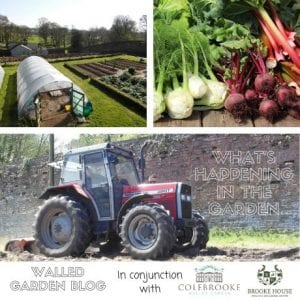 The Walled Garden Blog will contain information about what's happening in the Walled Garden.